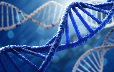 Specific Genetic Subtypes Linked to Distinct Physical Features of PWS, Study Reports