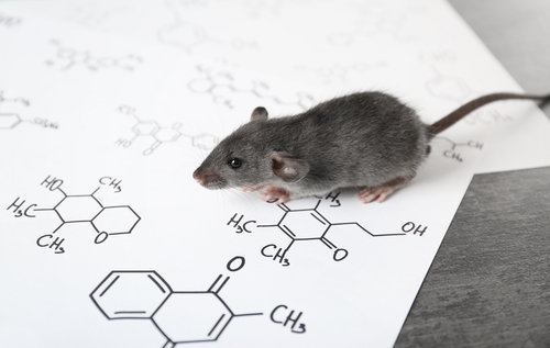 Ghrelin Receptor Agonist May Improve Survival of Infants with PWS, Mouse Study Suggests