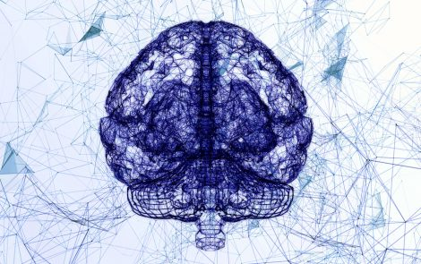 Study Links Structural Changes in Brain to Behavioral Problems in PWS Patients