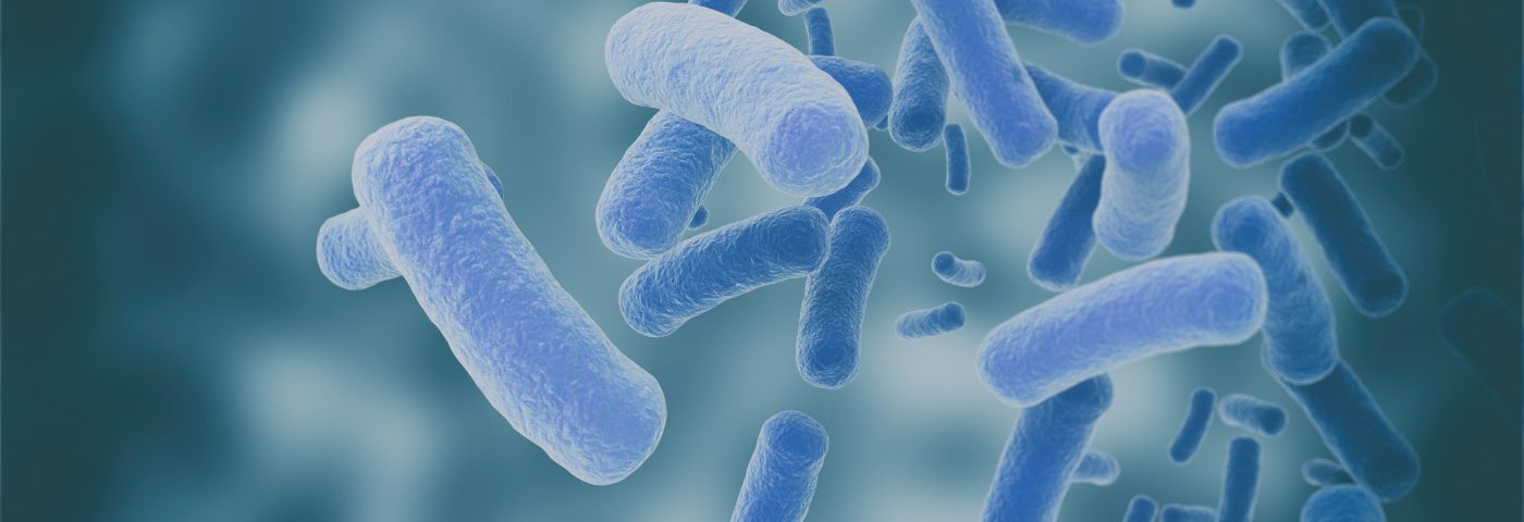 Gut Microbiome Differences in PWS Children Possibly Linked With Their Overeating, Study Suggests