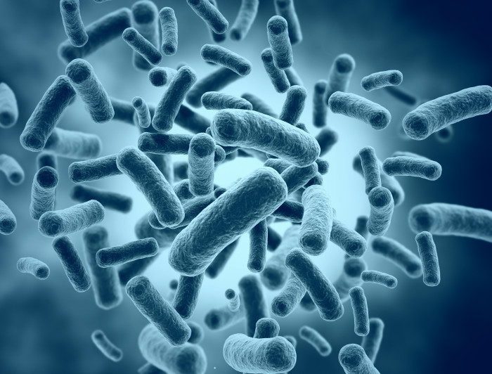 Probiotic   Prader-Willi Syndrome   Microbiome   Illustration of gut microbiome
