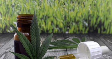 cannabidiol | Prader-Willi Syndrome News | Clinical Trials | Photo of marijuana leaves next to a dropper